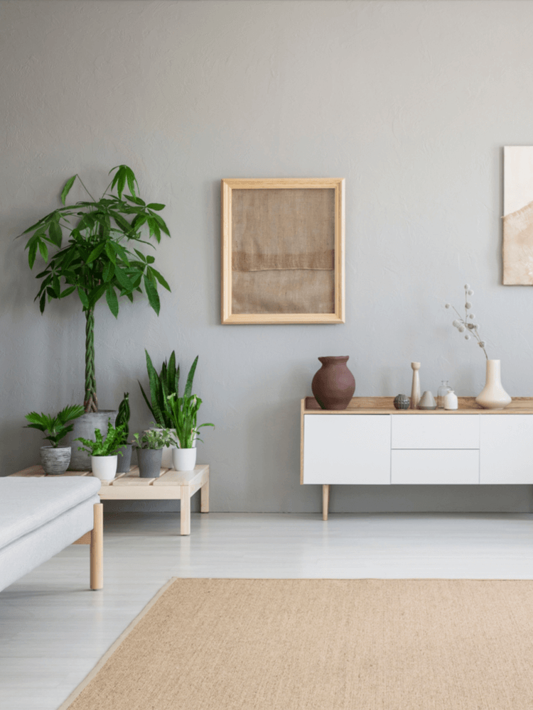 Scandi style indoor plants